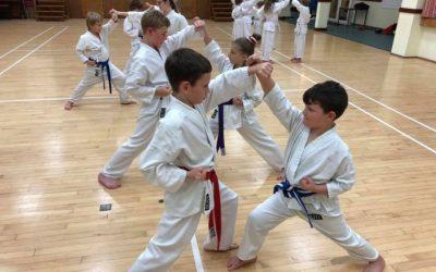 Karate ~ A study of movement